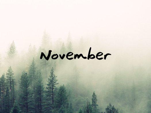 november-2015-1140x855